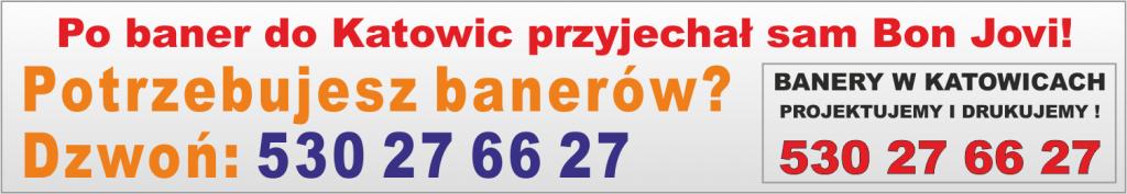 Banery Katowice