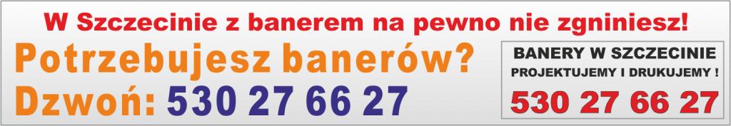 W Szczecinie z banerem na pewno nie zginiesz!